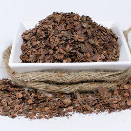 Cacao en Rama